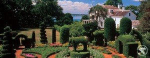 green-animals-topiary-garden-main[1]