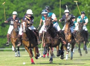 EntertainmentPolo