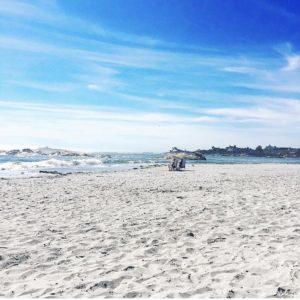 Shady Beach A Guide To Newport Ri