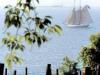 wineriessailboat
