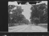 bellevue-1904